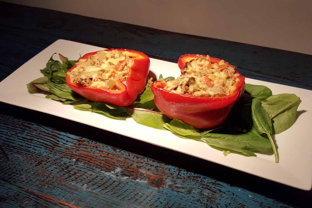gevulde paprika met tonijn en couscous 2